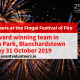 Event Volunteers at Fingal Festival of Fire 2019